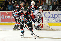 KELOWNA, CANADA, OCTOBER 5: Cody Chikie #14 of the Kelowna Rockets skates with the puck on October 5, 2011 at Prospera Place in Kelowna, British Columbia, Canada (Photo by Marissa Baecker/shootthebreeze.ca) *** Local Caption ***Cody Chikie;