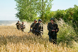 Reenactors portraying German soldiers from the Panzer Grenadier Division Großdeutschland patrol in column along the side of a cornfield.