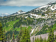 Mt. Rainier Skyline trail view of Nisqually headwaters.