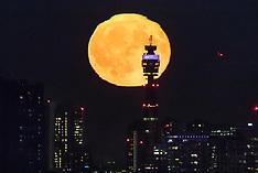 2018_09_25_Full_Harvest_Moon_LNP