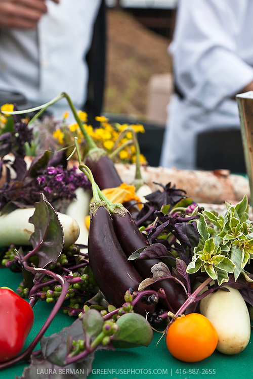 An arrangement of eggplants, tomatoes, Malabar spinach, flowers and herbs on a table at Slow Food's Picnic at the Brick Works in Toronto, 2010.