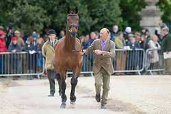 Levett Bill, (AUS), Shannondale Titan<br /> First Horse Inspection - Mitsubishi Motors Badminton Horse Trials <br /> Badminton 2015
