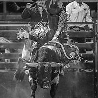 Eureka NRA Rodeo