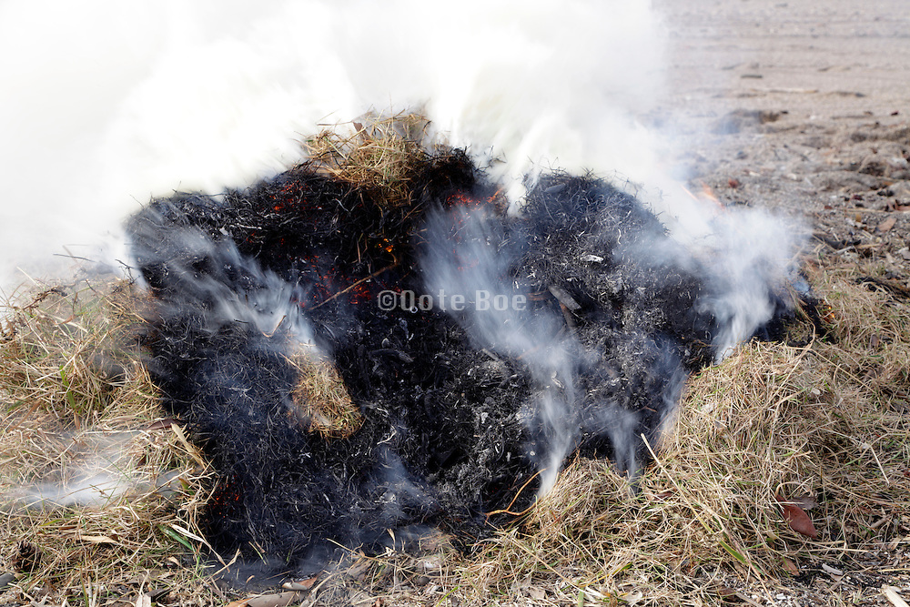 close up of a bail of collected beach straw burning