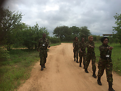 Jan. 8, 2015 - BALULE RESERVE, SOUTH AFRICA: Four recruits marching. LED BY BRITISH former military personnel these pictures show how courageous women anti-poachers train with guns in their battle to preserve Africa's endangered animals. Operating in the Kruger National Park's Balule Nature Reserve the 24-member strong all-female Black Mamba Anti-Poaching Unit patrols 50,000 hectares of bush to protect elephants and rhinos that are hunted as part of the estimated £12billion a year illegal world animal trade. These ladies, who as pictures show pose with weapons but also know how to party, are on the front line of a deadly war for the resources of their continent. Over the past year 1,000 wildlife rangers have been killed in Africa while protecting endangered wildlife. Black Mamba Commander and former Royal Navy serviceman Russell Baker (28) from Grimsby, UK explained exclusively how and why this South African special unit was established. (Credit Image: © Media Drum World/MediaDrumWorld/ZUMAPRESS.com)