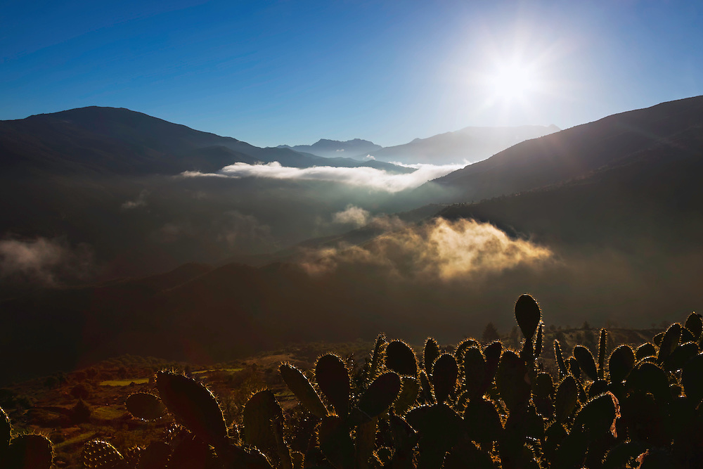High Atlas Mountains with morning fog and cactus plants, Morocco.