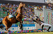 Zsofia Foldhazi from Hungary falls off horse Christino during the Show Jumping of the Rio 2016 Olympic Games Modern Pentathlon events in Rio de Janeiro, Brazil, 19 August 2016.