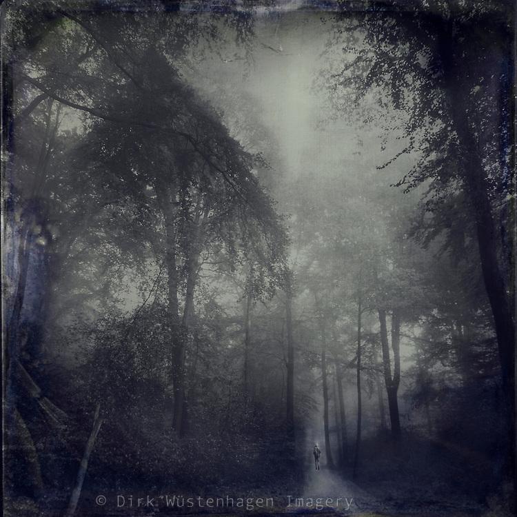Lonesome wanderer in a misty forest.<br /> <br /> Prints &amp; more: http://society6.com/DirkWuestenhagenImagery/SecreT-jouRney-WWU_Print