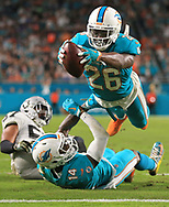 Miami Dolphins running back Damien Williams (26) scores in the second quarter as the Miami Dolphins host the Oakland Raiders at Hard Rock Stadium on Sunday, November 5, 2017.