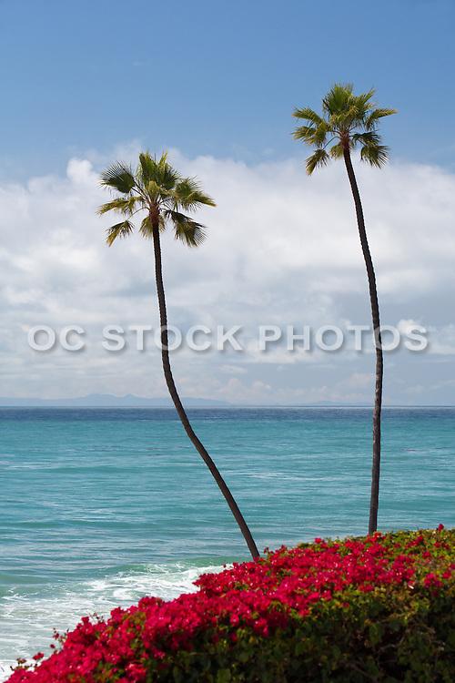 San Clemente Pacific Ocean Orange County California