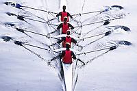Men's Crew on Lake Washington --- Image by © Jim Cummins/CORBIS