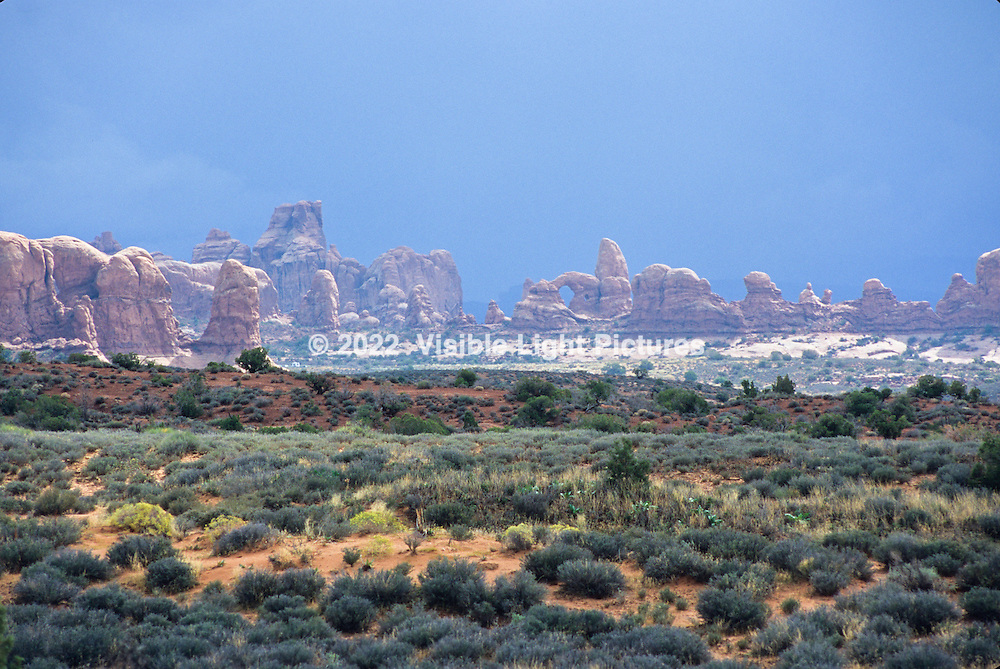 Arches National Park, Moab, UT, USA.  This is probably one of my last film shoots, about 2005.  This image was captured on a Nikon F5 with a 80-200 mm f2.8 zoom, shot on Velvia 100.  Shutter speed 1/40th at approx. f8 or f11-  Tripod mounted.  Normally bright orange/red, the arches in the distance were lit by a break in the otherwise overcast sky, providing this off-world landscape.