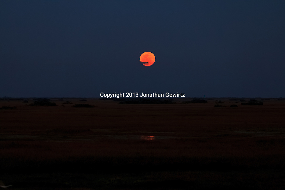 The full moon rises over flooded sawgrass prairie in the Shark Valley Section of Everglades National Park, Florida. <br />