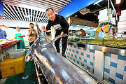 QINGDAO, CHINA - SEPTEMBER 12: (CHINA OUT) <br /> <br /> Fisherman Catches Over 300 Kilograms Swordfish<br /> <br /> Shi Donglei, owner of a wild seafood supermarket, poses with a 310-kilogram weight swordfish on September 12, 2015 in Qingdao, Shandong Province of China. A fisherman caught a swordfish on Friday in Yellow Sea which weighted 310 kilograms and was in 4.1 meters long. The swordfish has carried to a seafood supermarket in Qingdao City.<br /> ©Exclusivepix Media