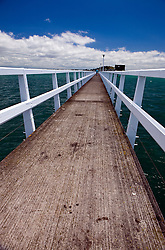 Fishing pier near Mission Bay, extending out into the Waitemata Harbour, Auckland, New Zealand