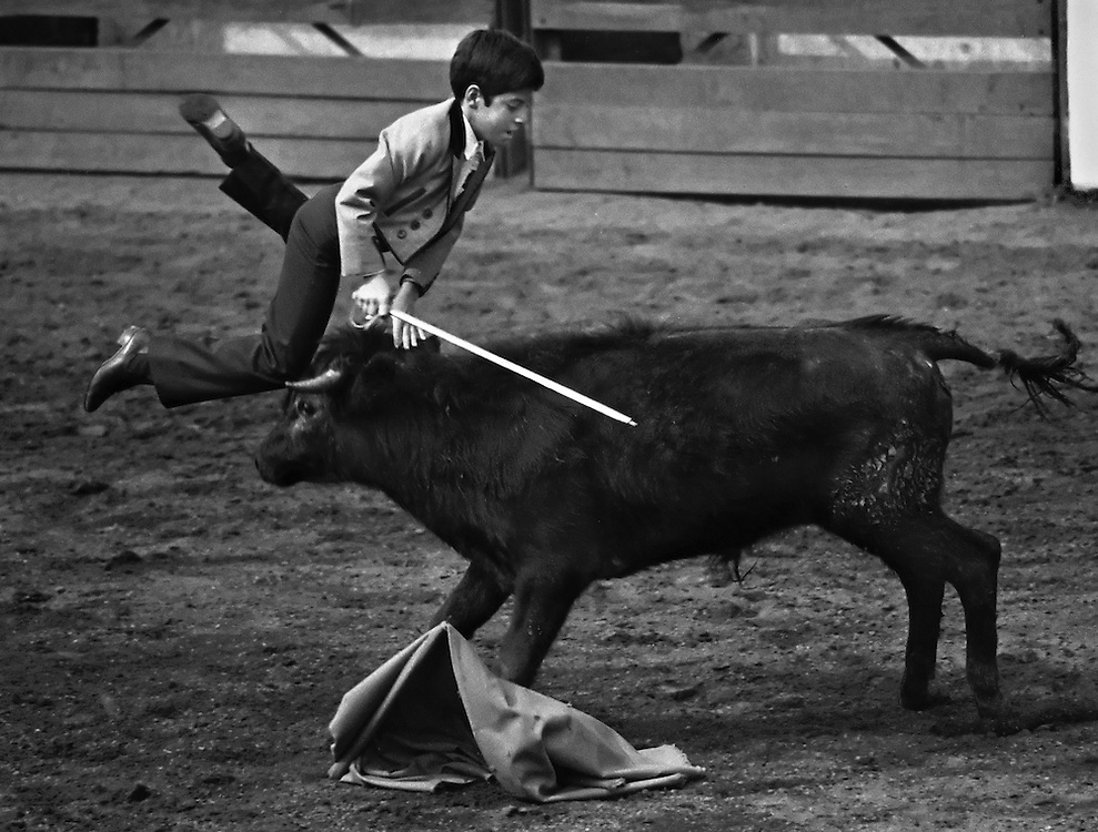 Matador in training Juan Pedro, 8, is caught by a young bull while putting on a display of bullfighting in Mexico City, Mexico. (1982)