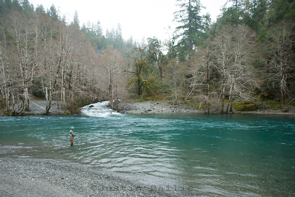 winter wild steelhead fly fishing on the chetco river in