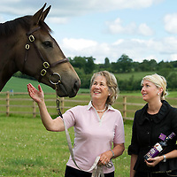 FREE TO USE PHOTOGRAPH....Famous Grouse Sponsor Perth Show.....<br /> Beth McMillan (right) Marketing Manager at The Famous Grouse Experience pictured with Mrs Hazel England and her horse Secret Solitair a 3 year old filly that will be competing at this years Perth Show.<br /> Picture by Graeme Hart.<br /> Copyright Perthshire Picture Agency<br /> Tel: 01738 623350  Mobile: 07990 594431