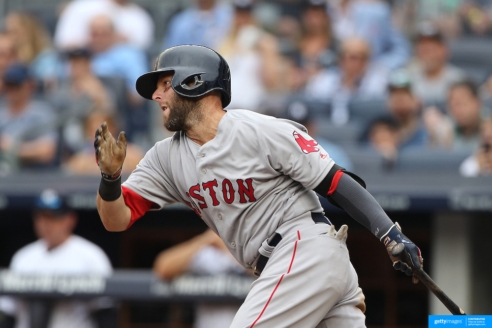 NEW YORK, NEW YORK - July 10: Dustin Pedroia #15 of the Boston Red Sox batting during the Boston Red Sox Vs New York Yankees regular season MLB game at Yankee Stadium on July 10, 2016 in New York City. (Photo by Tim Clayton/Corbis via Getty Images)