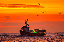 © Licensed to London News Pictures. 29/09/2018. Scarborough UK. A fishing boat returns to Scarborough harbour with it's catch at dawn this morning in Yorkshire. Photo credit: Andrew McCaren/LNP
