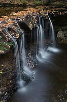 Oneida Falls, Ricketts Glen State Park, Pennsylvania