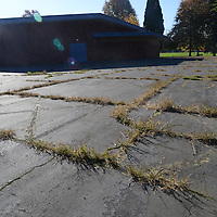 Grass and weeds taking claim of the playground area at Clarendon Elementary School.