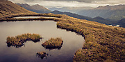 Golden tussock and tarns above the tree line of Fiordland National Park, New Zealand.