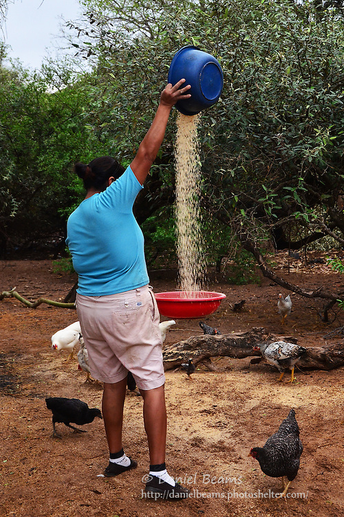 Guarani woman threshing rice in Isosog