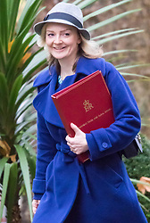 Downing Street, London, November 24th 2015. Secretary of State for Environment, Food and Rural Affairs Liz Truss arrives at Downing Street for the weekly cabinet meeting. ///FOR LICENCING CONTACT: paul@pauldaveycreative.co.uk TEL:+44 (0) 7966 016 296 or +44 (0) 20 8969 6875. ©2015 Paul R Davey. All rights reserved.