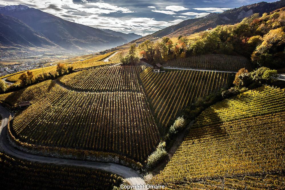 2015<br /> Vins, raisin, vigne, viticulture, montagne, Alpes. Valais<br /> Sierre vignoble, automne paysage, nuage cloud<br /> (PHOTO-GENIC.CH/ OLIVIER MAIRE)