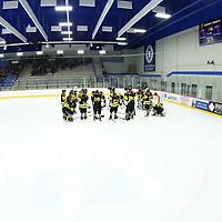 Women's Ice Hockey: University of St. Thomas (Minnesota) Tommies vs. Gustavus Adolphus College Gusties