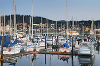 Yachts in the Squalicum Marina at dusk, Bellingham bay Washington