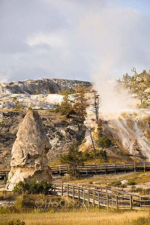 Mammoth Hotsprings, Yellowstone National Park.