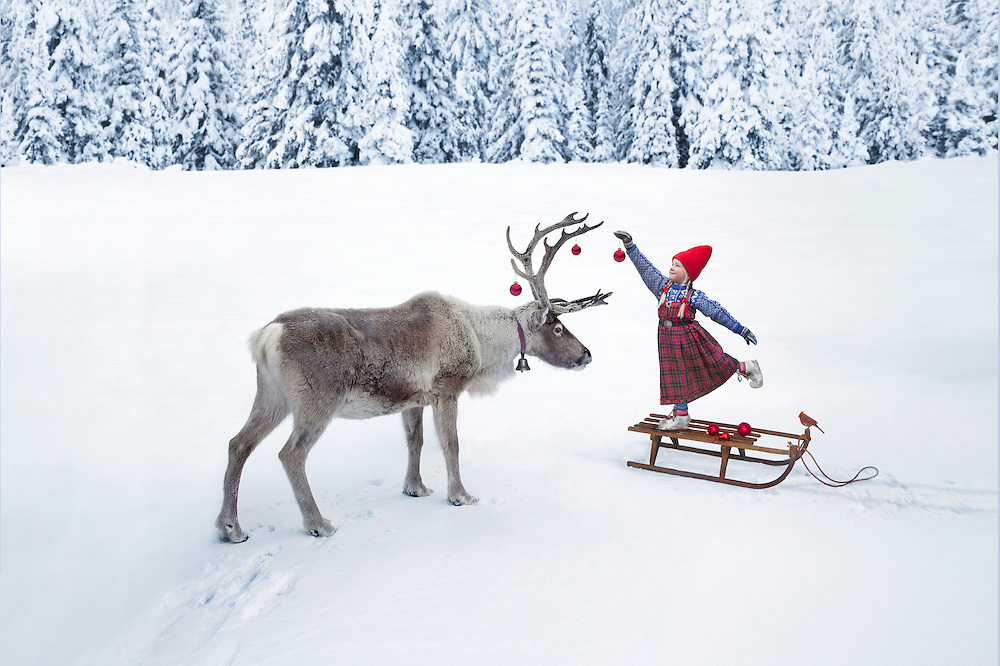 the christmas wish a photographic fairy tale by lori evert and per breiehagen