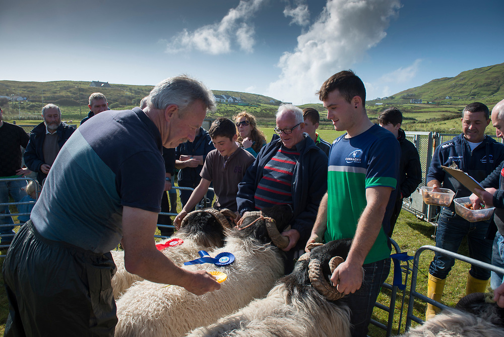 Clare Island Ram Fair &amp; Sheep Dog Trials.<br /> Judge James Lally presents first second and third place to Morgan prender, Michael Gerry O'Malley and Christian Prender for their aged blackface Rams . Pic: Michael Mc Laughlin
