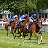 Newmarket 8th June 2013