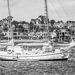 Newport Beach skyline panoramic photo in black and white. Panoramic picture ratio is 1:3 and Includes boats in Newport Harbor (Newport Bay) with Newport Beach Fashion Island office buildings in the background.