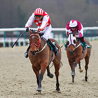 Hillbilly Boy and Ryan While winning the 12.40 race