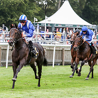 Newmarket 18th August