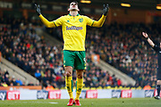 Norwich City striker Nelson Oliveira (9) looks to the sky after Norwich miss another chance during the EFL Sky Bet Championship match between Norwich City and Bolton Wanderers at Carrow Road, Norwich, England on 24 February 2018. Picture by Phil Chaplin.