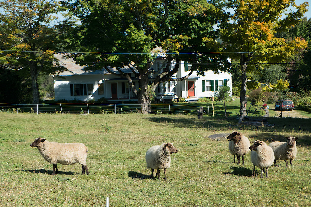 Bear Swamp Orchard and Cidery   September 19, 2014
