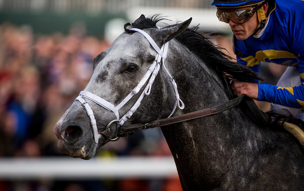 October 30, 2015:   Liam's Map with Javier Castellano aboard wins the Breeders' Cup Dirt Mile at Keeneland Race Track in Lexington, Kentucky. Evers/ESW/CSM