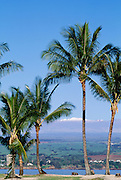 Hilo town with snowcapped Mauna Kea in Background, Island of Hawaii