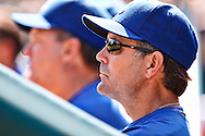 September 17, 2009: #22 Royals manager Trey Hillman during the MLB game between the Kansas City Royals and Detroit Tigers at Comerica Park, Detroit, Michigan. Royals won 9-2
