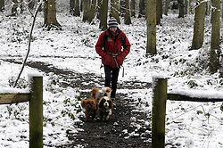 © Licensed to London News Pictures. 13/02/2013.The cold weather continues in Kent today (13/02/2013) with lots of snow at Andrew's Wood in Sevenoaks Kent..Photo credit : Grant Falvey/LNP