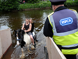 © Licensed to London News Pictures. <br /> 05/06/2014. <br /> <br /> Appleby, Cumbria, England<br /> <br /> The first horse walks from the River Eden as RSPA officials look on as gypsies and travellers gather during the annual horse fair on 5 June, 2014 in Appleby, Cumbria. The event remains one of the largest and oldest events in Europe and gives the opportunity for travelling communities to meet friends, celebrate their music, folklore and to buy and sell horses.<br /> <br /> The event has existed under the protection of a charter granted by King James II in 1685 and it remains the most important event in the gypsy and traveller calendar.<br /> <br /> Photo credit : Ian Forsyth/LNP
