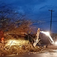 Volunteers and a crew with the Monroe County Road Department works to remove a large tree downed in front of the Advanced Learning Center in Becker after strong winds blew through the county Saturday evening.