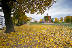 View of Wasserturm Park  during Autumn  in Prenzlauer Berg , Berlin, Germany