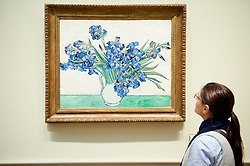 Woman looking at painting Irises by Vincent van Gogh at Metropolitan Museum of Art in Manhattan , New York City, USA