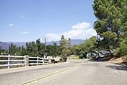 Ojai, California, USA
